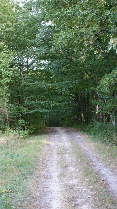 balades vélo dans les bois gite ecologique visite touristique nature touraine val de loire