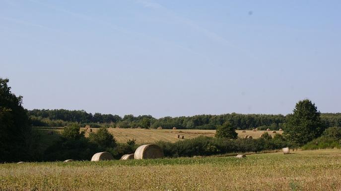 paysage de campagne plateau saint-ouens randonnées vélo autour du gite
