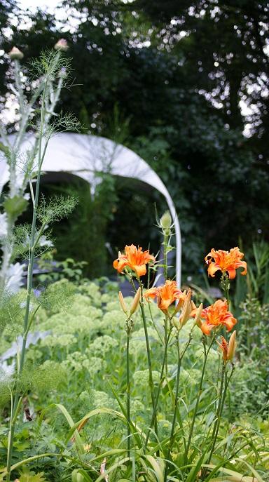Réserver un gite insolite à Amboise site authentique charme écologique nuit 80 euros calme et confort absolus fenetre ouverte sur le jardin de la Biodiversité Jardins de la Garance Voyageuse Booking